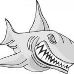 San Jose Short Sales and San Jose Sharks
